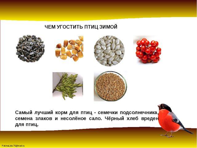 ЧЕМ УГОСТИТЬ ПТИЦ ЗИМОЙ Самый лучший корм для птиц - семечки подсолнечника, с...