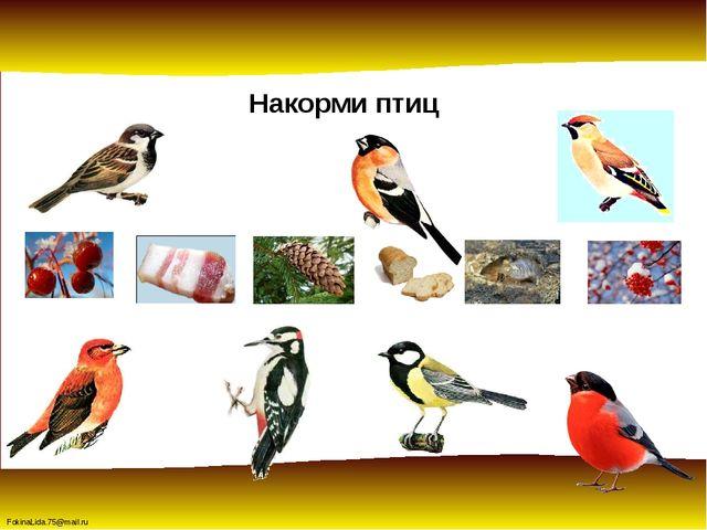 Накорми птиц FokinaLida.75@mail.ru