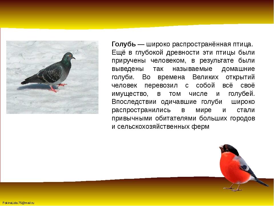 Голубь— широко распространённая птица. Ещё в глубокой древности эти птицы бы...