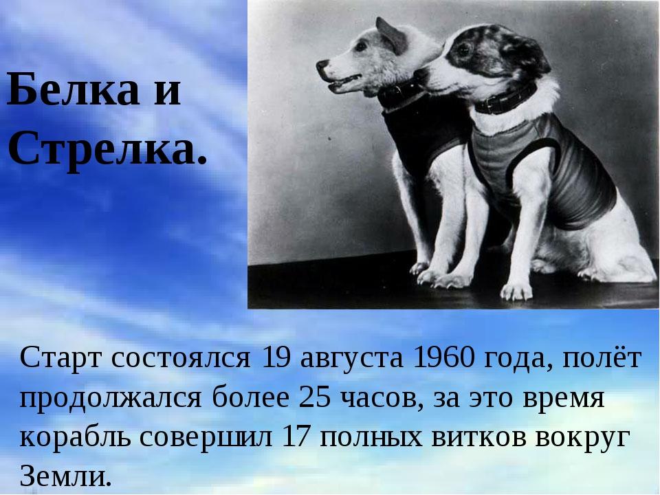 Белка и Стрелка. Старт состоялся19 августа1960 года, полёт продолжался боле...