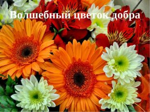 Волшебный цветок добра