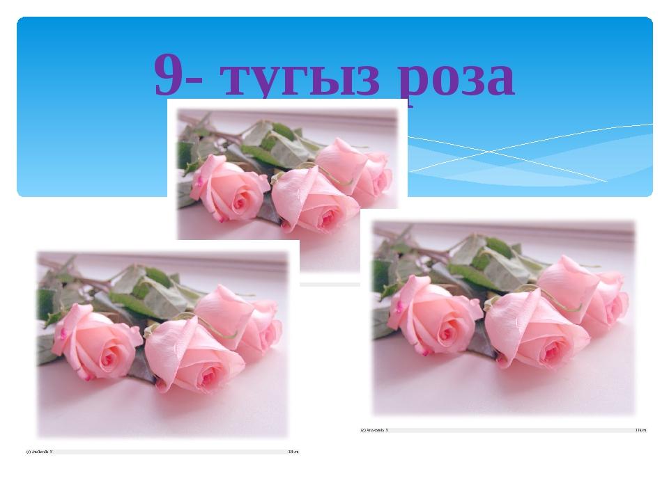 9- тугыз роза