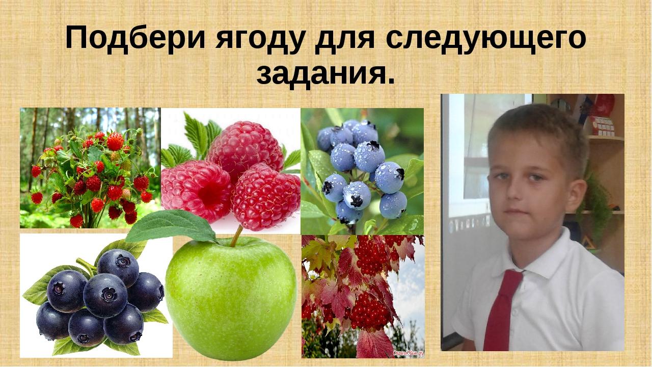 Подбери ягоду для следующего задания.