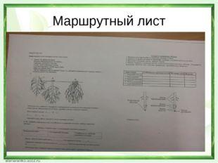 Маршрутный лист
