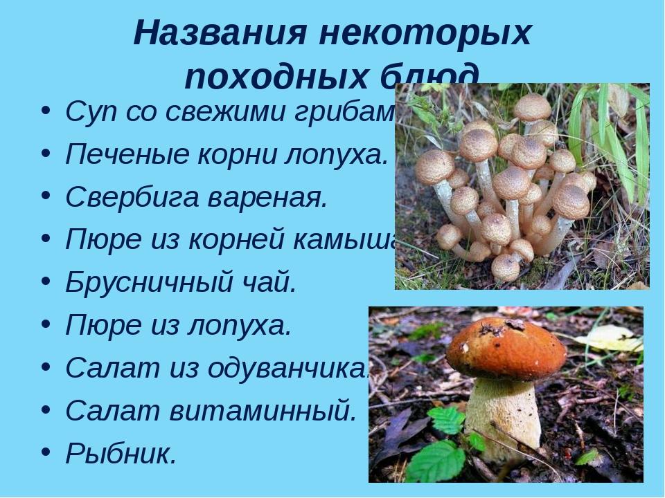 Названия некоторых походных блюд Суп со свежими грибами. Печеные корни лопуха...