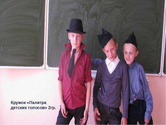 Кружок «Палитра детских голосов» 2гр.