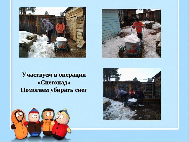 Участвуем в операции «Снегопад» Помогаем убирать снег