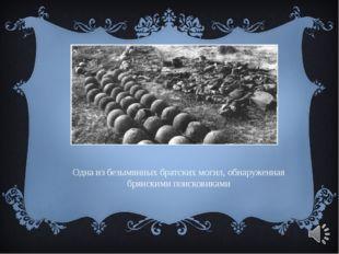 Одна из безымянных братских могил, обнаруженная брянскими поисковиками