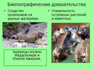 Биогеографические доказательства Сходство организмов на разных материках Уник