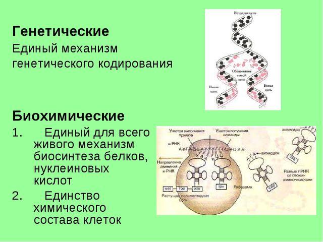 Генетические Единый механизм генетического кодирования Биохимические Единый...