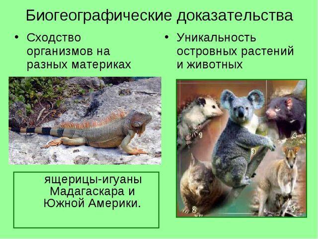 Биогеографические доказательства Сходство организмов на разных материках Уник...