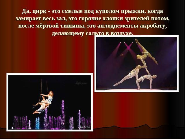 Да, цирк - это смелые под куполом прыжки, когда замирает весь зал, это горячи...
