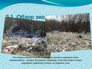 2.1 Обзор экологического состояния с. Можаров-Майдан по бытовым отходам. На у