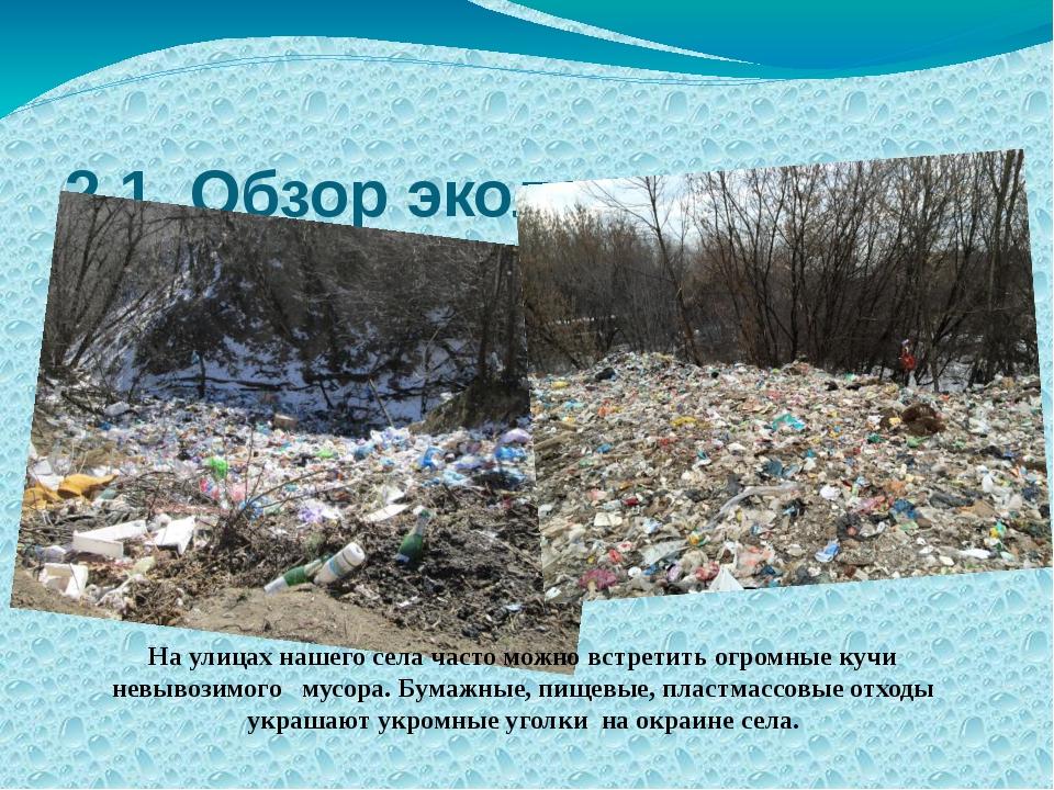 2.1 Обзор экологического состояния с. Можаров-Майдан по бытовым отходам. На у...