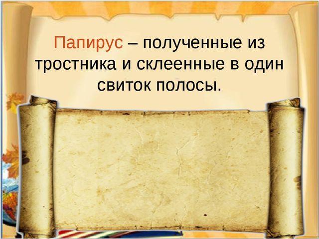 Папирус – полученные из тростника и склеенные в один свиток полосы.