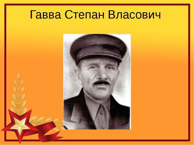 Гавва Степан Власович