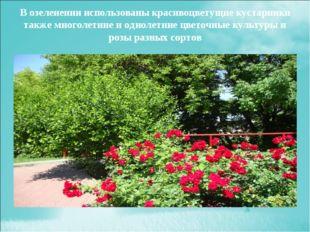 В озеленении использованы красивоцветущие кустарники также многолетние и одно