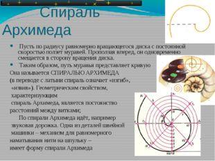 Спираль Архимеда Пусть по радиусу равномерно вращающегося диска с постоянной