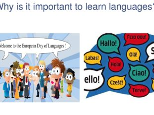 Why is it important to learn languages?
