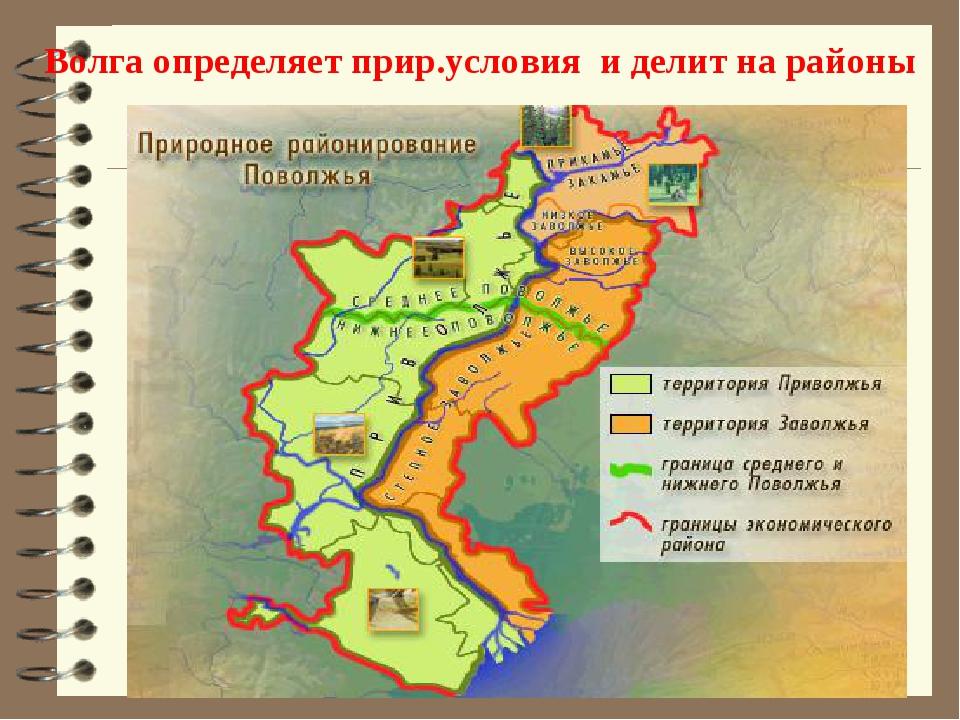 Волга определяет прир.условия и делит на районы