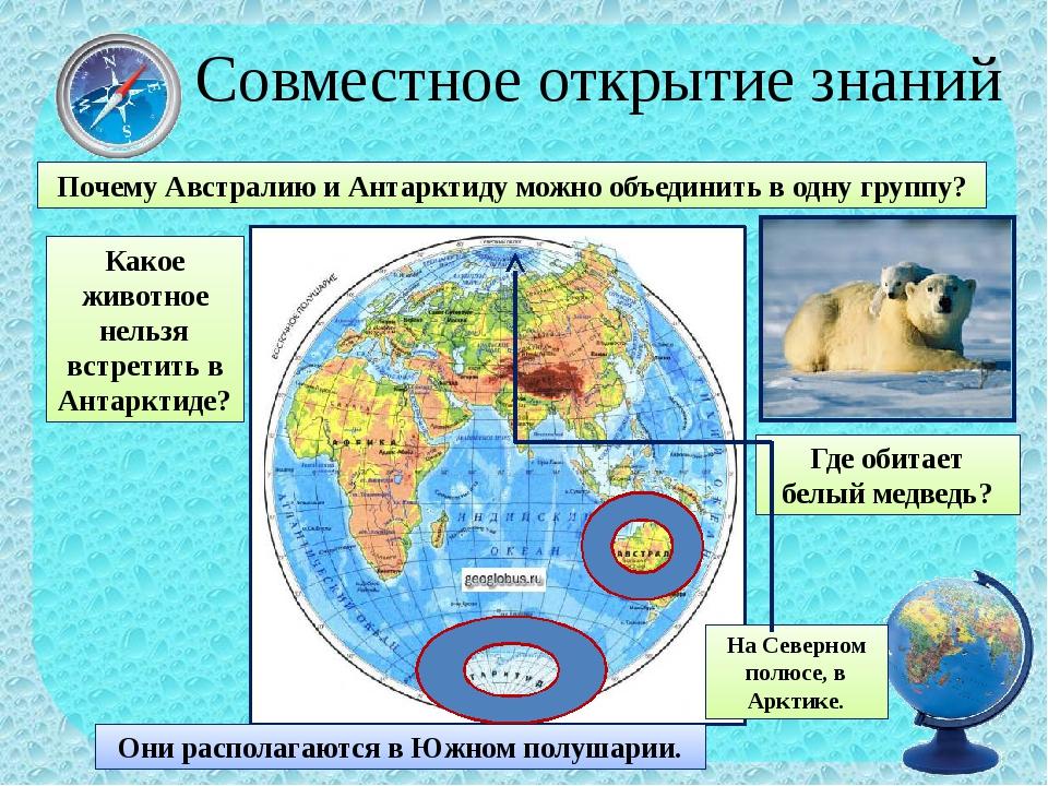 Совместное открытие знаний Почему Австралию и Антарктиду можно объединить в...