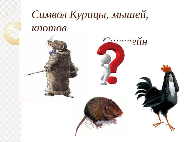 Символ Курицы, мышей, кротов Синквейн