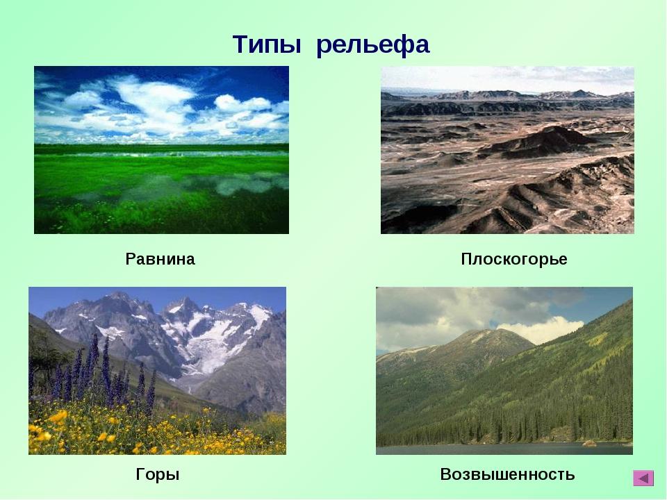 Типы рельефа Равнина Плоскогорье Горы Возвышенность
