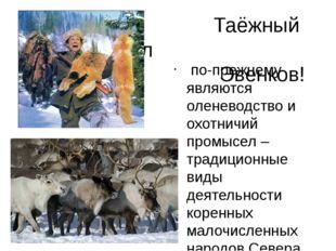 Таёжный промысел Эвенков! по-прежнему являются оленеводство и охотничий про