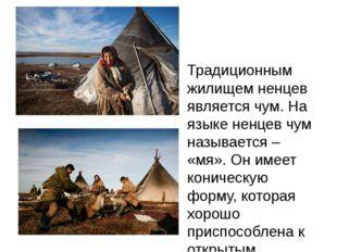Традиционным жилищем ненцев является чум. На языке ненцев чум называется – «