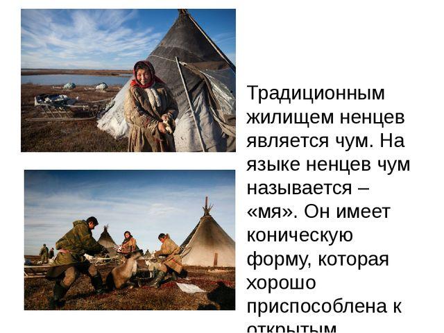 Традиционным жилищем ненцев является чум. На языке ненцев чум называется – «...