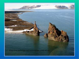Короткое лето Арктики напоминает нашу весну…