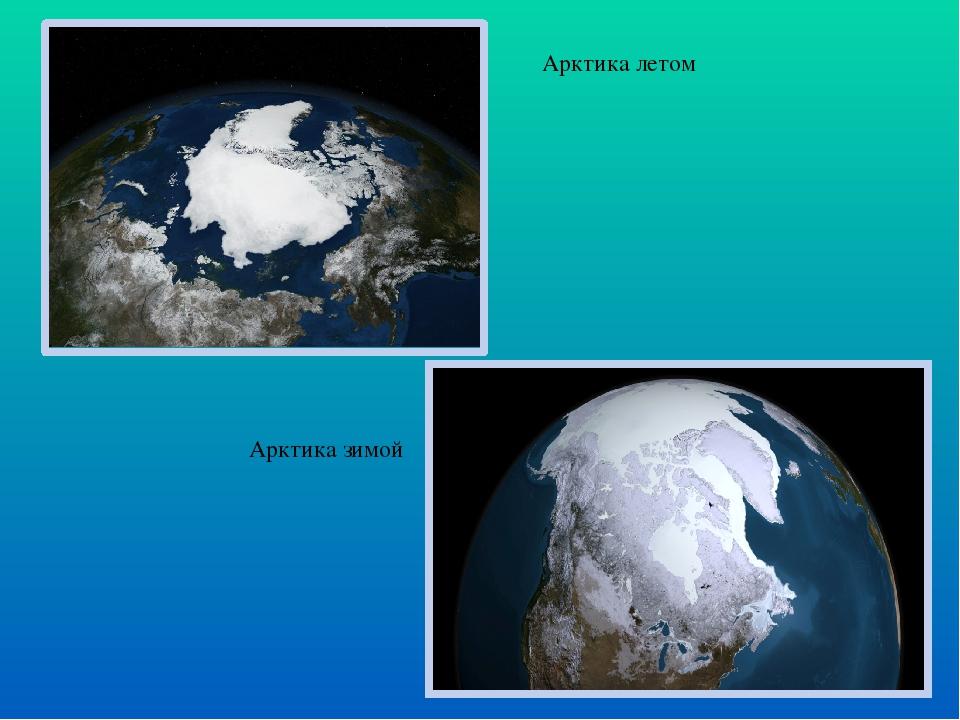 Арктика летом Арктика зимой
