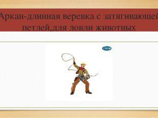 Аркан-длинная веревка с затягивающей петлей,для ловли животных