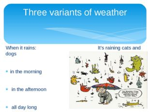 When it rains: It's raining cats and dogs in the morning in the afternoon all