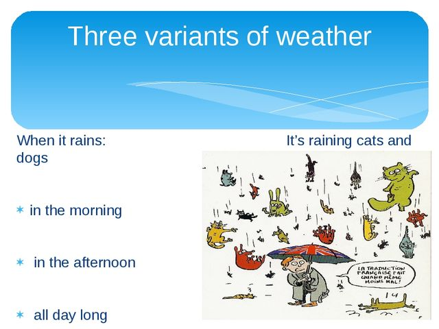 When it rains: It's raining cats and dogs in the morning in the afternoon all...