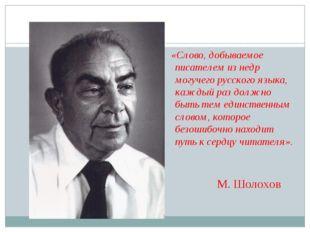 «Слово, добываемое писателем изнедр могучего русского языка, каждый раздол
