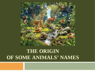 THE ORIGIN OF SOME ANIMALS' NAMES