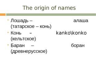 The origin of names Лошадь – алаша (татарское – конь) Конь – kanko\konko (кел