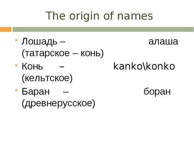 The origin of names Лошадь – алаша (татарское – конь) Конь – kanko\konko (кел...