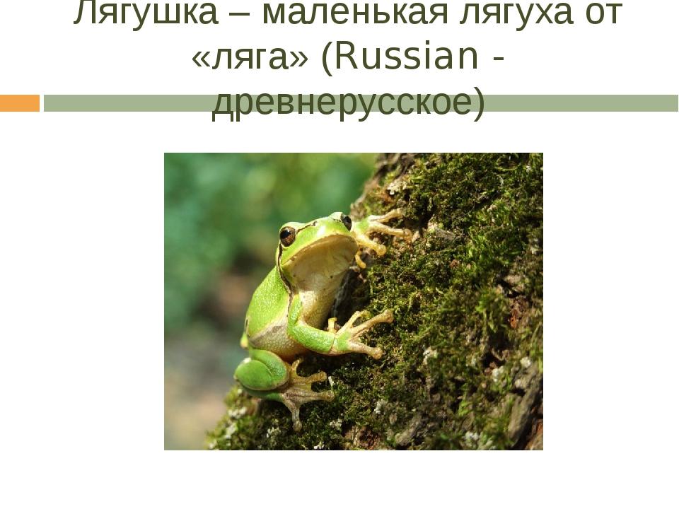Лягушка – маленькая лягуха от «ляга» (Russian - древнерусское)
