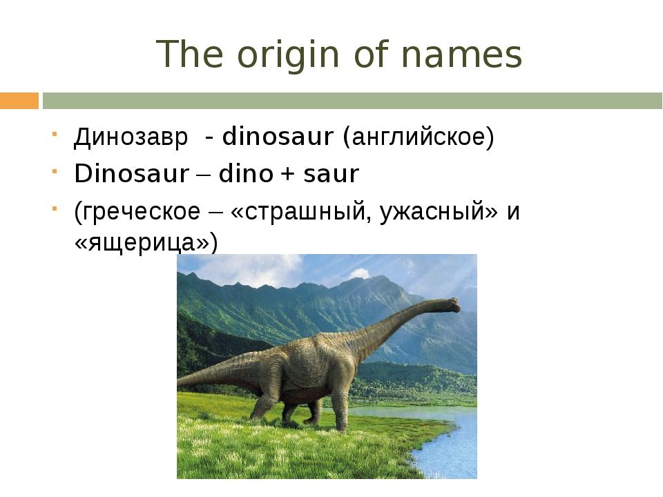 The origin of names Динозавр - dinosaur (английское) Dinosaur – dino + saur (...