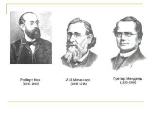 Роберт Кох (1843-1910) И.И.Мечников (1845-1916) Грегор Мендель (1822-1884)
