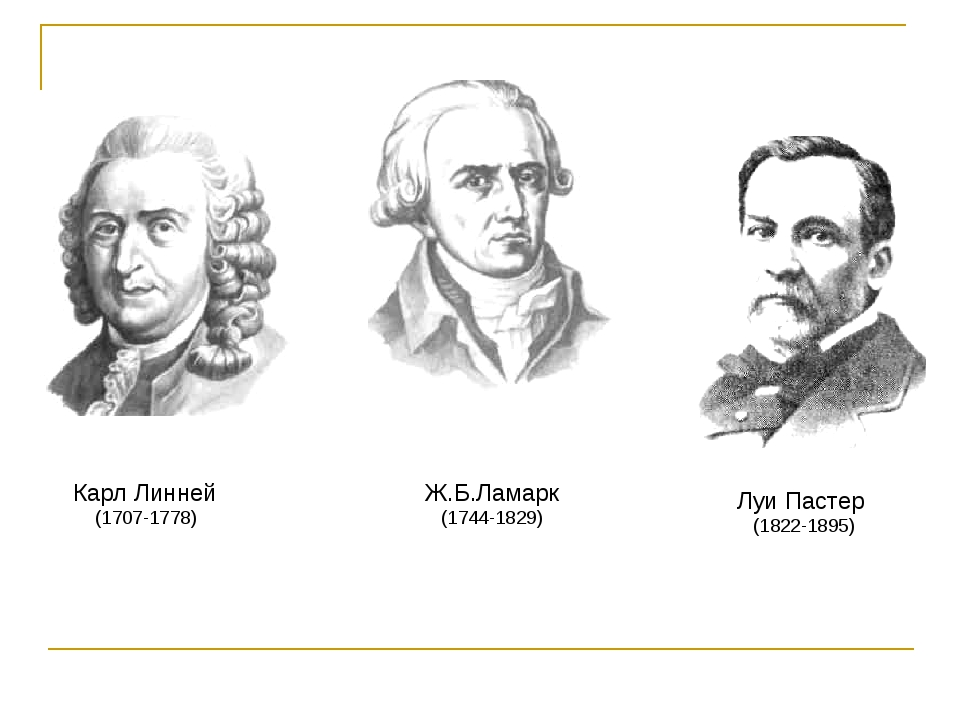 Карл Линней (1707-1778) Ж.Б.Ламарк (1744-1829) Луи Пастер (1822-1895)