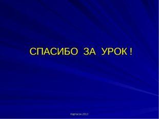 СПАСИБО ЗА УРОК ! Каргасок-2013 Каргасок-2013