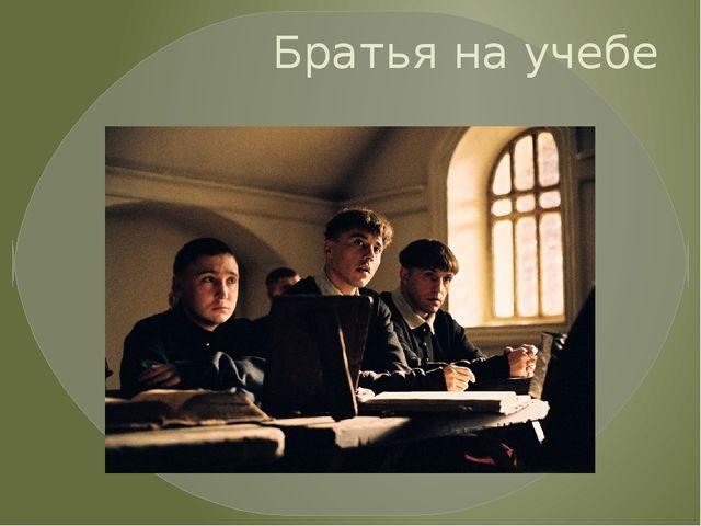 Братья на учебе