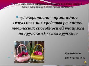 ГУ «Соколовская спецшкола интернат для детей сирот и детей, оставшихся без п