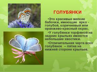 ГОЛУБЯНКИ Это красивые мелкие бабочки, имеющие ярко - голубой, коричневый ил