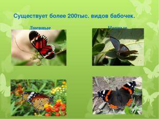 Существует более 200тыс. видов бабочек. Дневные Ночные
