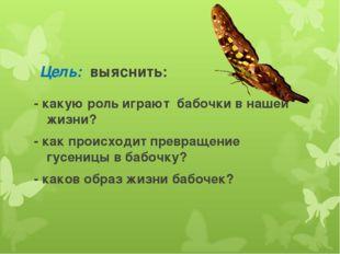 Цель: выяснить: - какую роль играют бабочки в нашей жизни? - как происходит п
