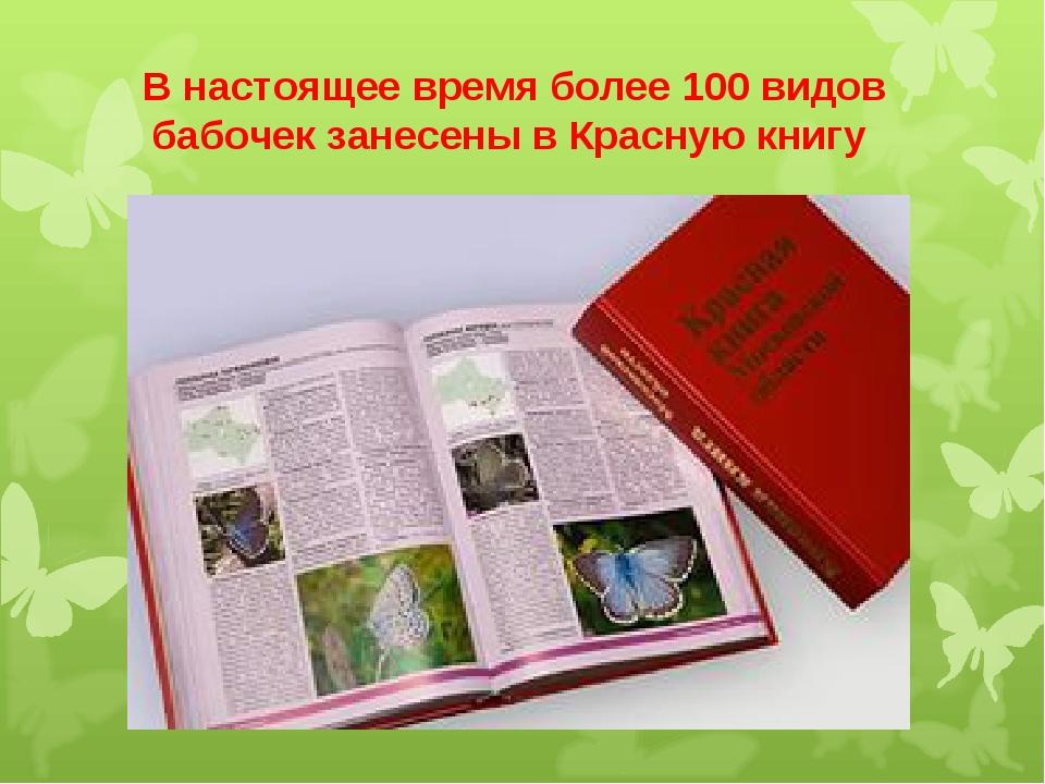 В настоящее время более 100 видов бабочек занесены в Красную книгу